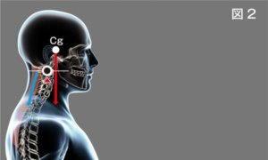 頸椎ヘルニア治療について説明画像2