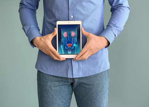 Man holding tablet computer with urinary system on screen agains